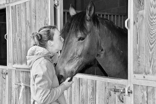 Kiss, Kisses, Black And White Photo, Girl And Horse