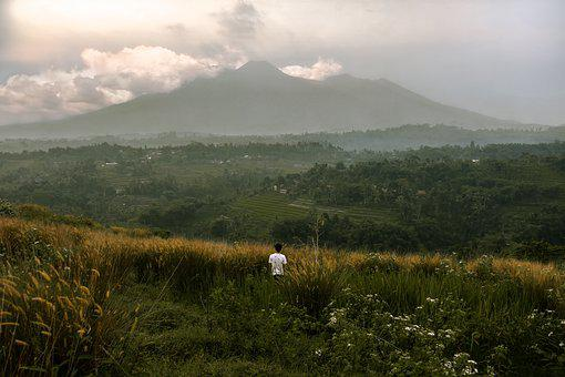 Landscape, View, Indonesia, Green, Mountain, Java