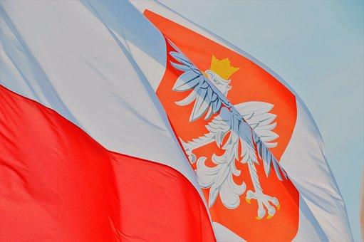 Flag, Eagle, Symbol, Emblem, Patriotic, National