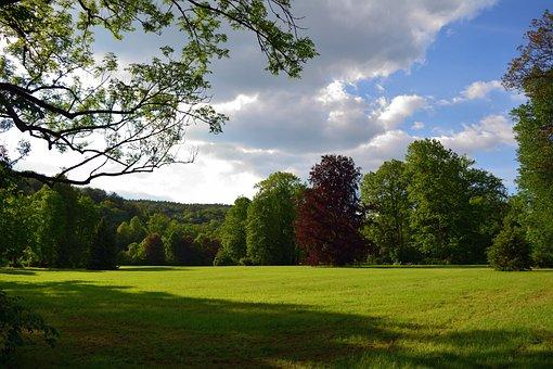 Park, Landscape, Nature, Trees, Thuringia Germany
