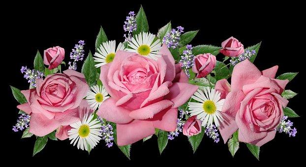 Roses, Daisies, Flowers, Arrangement, Garden, Nature