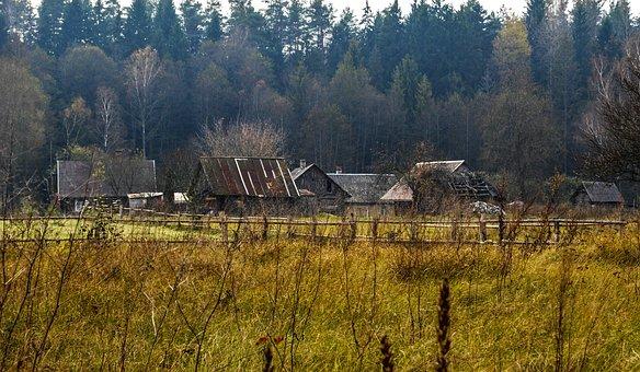 Rural, Countryside, Farm, Nature, Landscape, Field