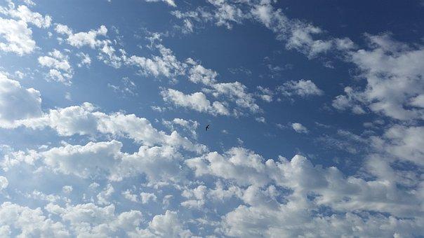 Sky, Clouds, Cloudiness, Nature, Landscape, Birds