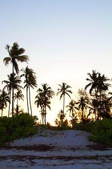 Tanzania, Zanzibar, Africa, Sea, Travel, Island, Beach