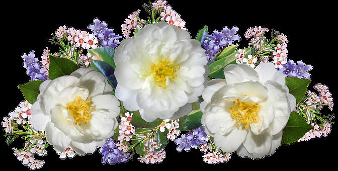 Flowers, Camellias, Wax Flowers, Bluebells, Arrangement