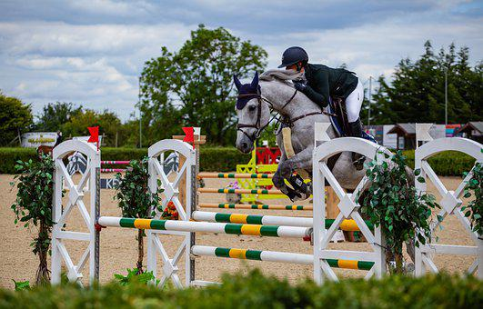 Horse Jumping, Jumping, Equestrian, Horse, Competition