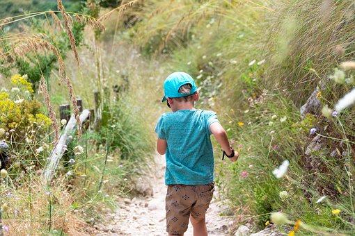 Boy, Meadow, Small, Flowers, The Path, Trekking