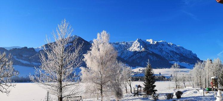 Winter, Landscape, Snow, Nature, Cold, Sun, Wintry
