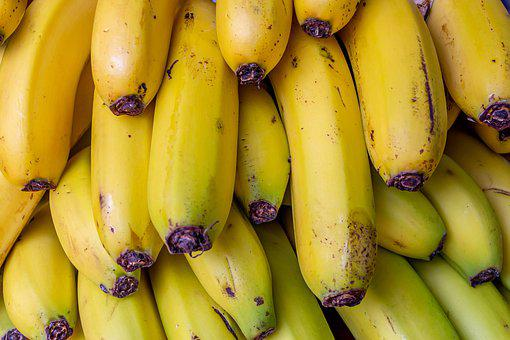 Bananas, Banana Shrub, Fruit, Sweet, Plant, Fruits