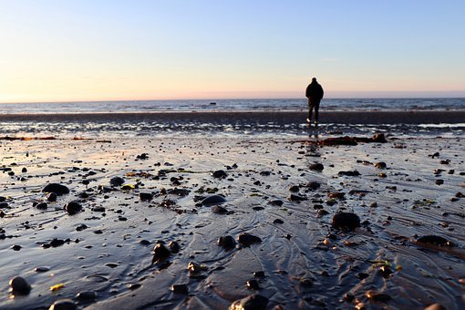 Beach, Water, Walk, Solitude, Sea, River, Side, Sand