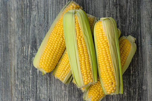 Corn, Vegetables, Harvest, Nutrition, Food, Yellow
