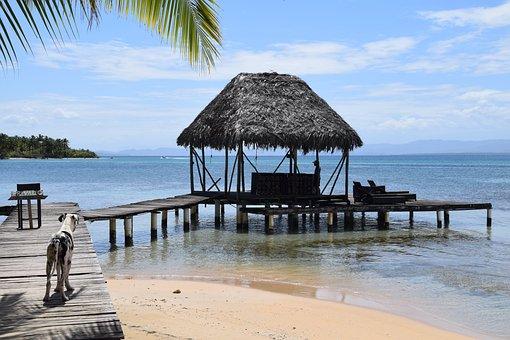 Paradise, Beach, Sea, Tropical, Island, Coast