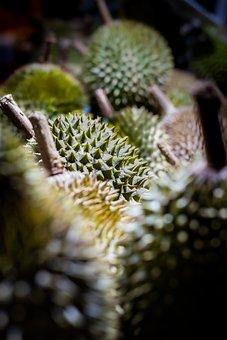 Durian, Green, Sweet, Fruit, Malaysia, Delicious, Fresh