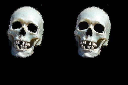 Death, Once, Skull, Halloween, Grave, Skeleton, Bones