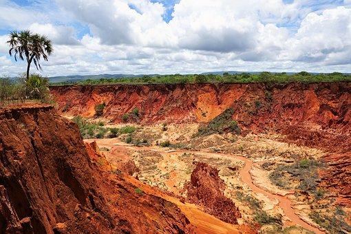 Park, Nature, Madagascar, Earth, Summer, Landscape