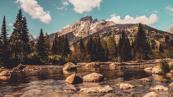 Grand Teton Mountains, River, Pine Trees, Wyoming