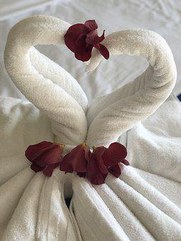 Hotel, Folded, Swan, Vacation, Holiday