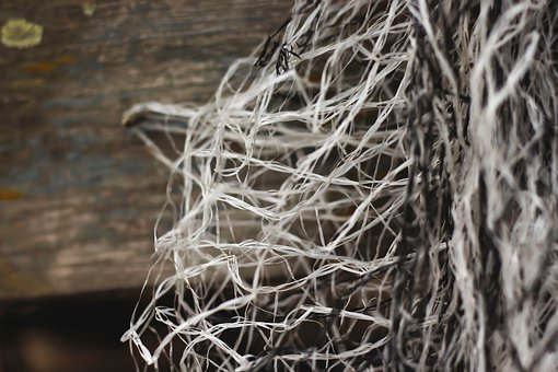 Web, Fishing Net, Power Cord, Threads, Old, Used