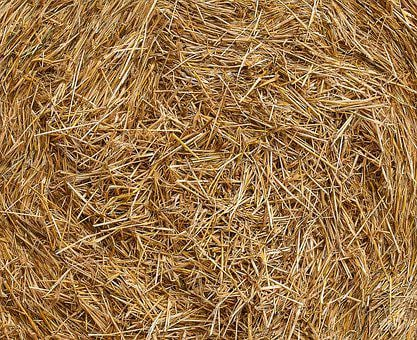 Straw, Agriculture, Background, Hay, Harvested, Rural