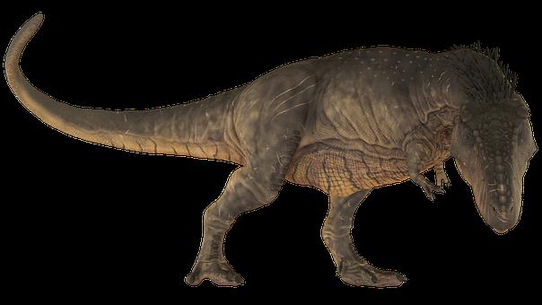 Dinosaur, Tirannosaurus, Extinct, Dino, Animals, T-rex