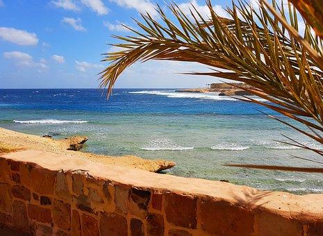 Red Sea, Sea, Water, Beach, Sun