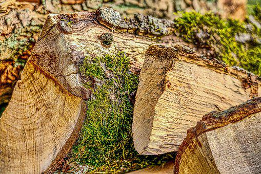 Wood, Firewood, Forest, Holzstapel, Background