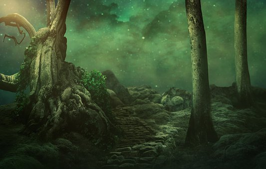 Trees, Starry Sky, Rock, Moss, Moonlight, Mystical