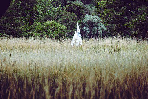 Sailing Boat, Forest, Landscape, Nature, Recovery