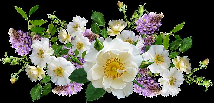 Roses, Wisteria, Flowers, Arrangement, Cut Out