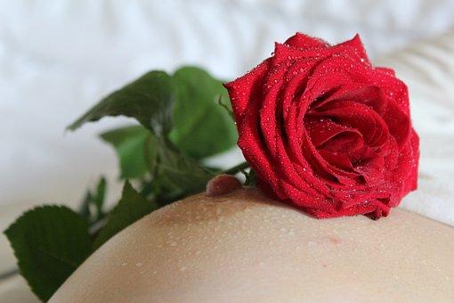 Nipple, Breast, Rose, Erotica, Red, Flower, Women, Body