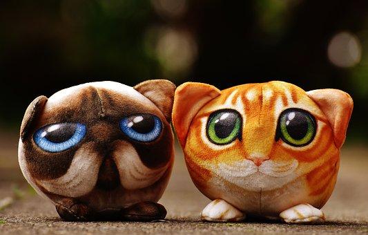 Cat, Stuffed Animals, Cute, Stuffed Animal, Toys, Soft