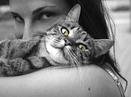 Animals, Cat, Girl, Happiness, Emotions, Hug, Pet