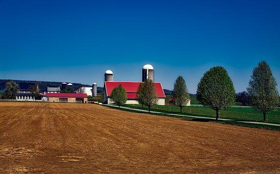 Farm, Amish, Pennsylvania, Landscape, Barn, Agriculture