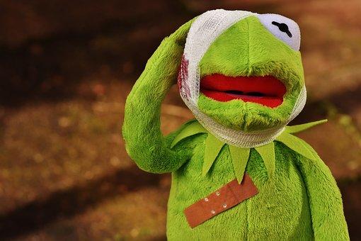 Kermit, First Aid, Injured, Association, Blood, Frog