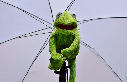 Kermit, Photo Screen, Frog, Funny, Soft Toy