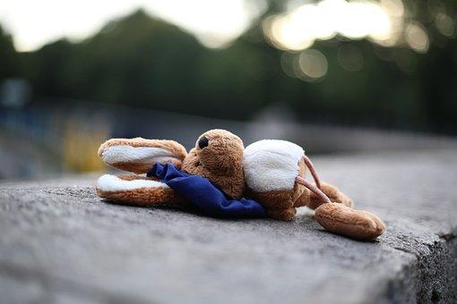 Soft Toy, Sad, Stuffed Animal, Hare, Toys, Teddy Bear
