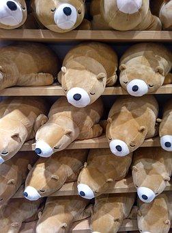 The Bear, Doll, Toys, Shop, Auction, Soft, Cute, Sleep