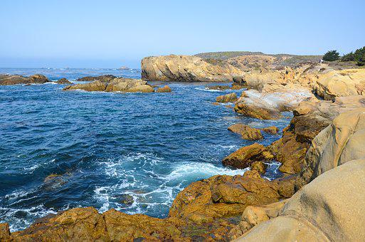 Usa, America, Coast, West Coast, Point Lobos, Landscape