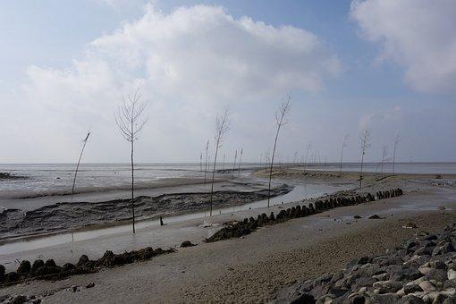 Wadden Sea, Ebb, Fairway, Wremen, Schlick, Mark