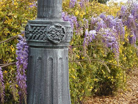 Wisteria, Bloom, Purple, Flower, Light Post, Lamp Post