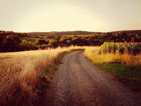 Landscape, Away, Marburg, Marbach, Atmosphere, Field