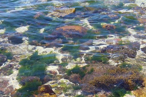 Beach, Waves, Sea, Water, Bottom