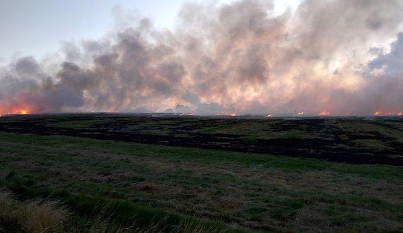 Fire, Field, Smoke, Flame, Nature, Environment, Heat