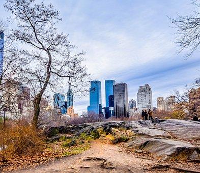 Central Park, New York, Wiinter, Central Park New York