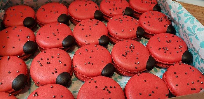 Macron, Food, Ladybug, Dessert, Confectionery