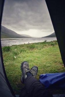 Camping, Outdoors, Exploring, Scotland, Wildlife
