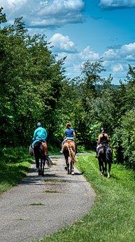 Horses, Landscape, Nature, Sky, Outdoors, Mood