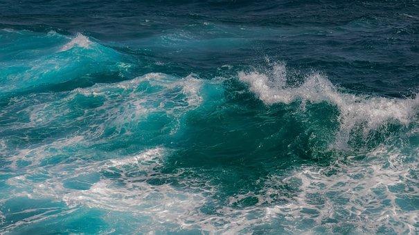 Wave, Surf, Sea, Water, Ocean, Nature, Splash, Motion