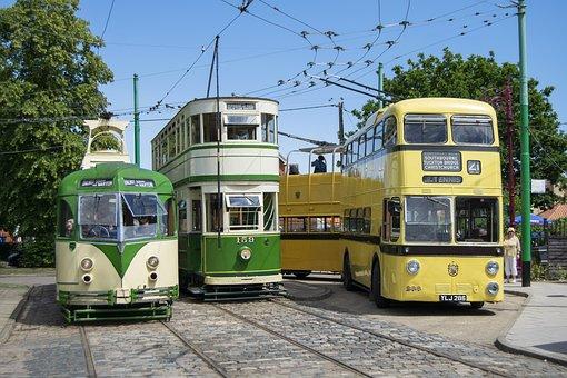 Bus, Trolley Bus, Trolley, Vehicle, Transportation