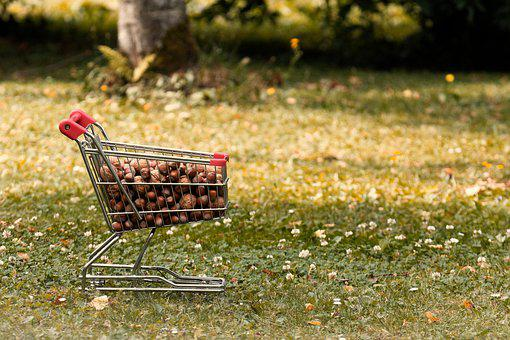 Shopping Cart, Walnuts, Hazelnuts, Food, Tasty, Shell